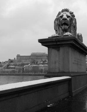Széchenyi Lion