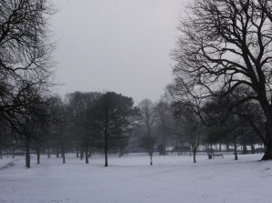 A Snowy Vista